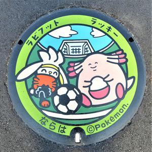 ポケふた.JPG